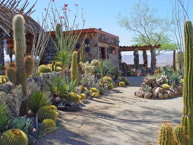 Gardendesignmag This Mojave Desert Garden Makes The Best Of What