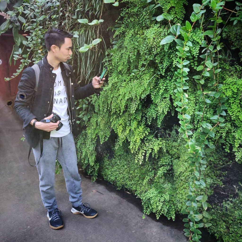 Such a pleasure to visit the @nybg - I'm so inspired by your wall of maidenhair ...