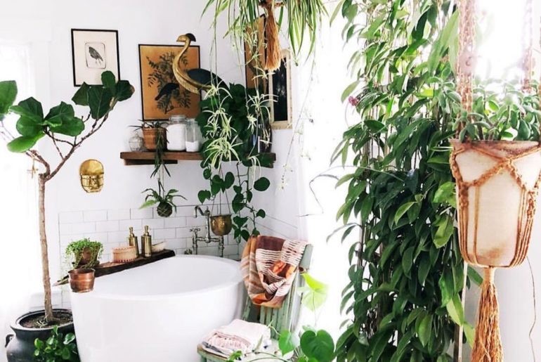 A plantastic bathroom we can get behind, from @vineandvintage — thanks for the t...