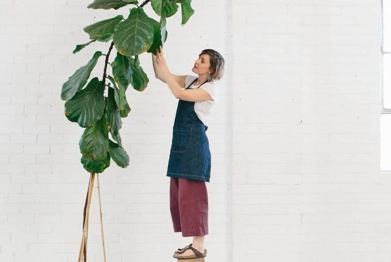 Let your love grow tall (like, really tall). Fiddle leaf fig goals by @stackwood...