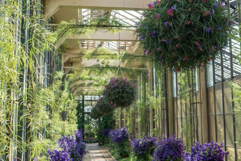 Follow @longwoodgardens Even better yet, go there Photo by Carol Orlosky...