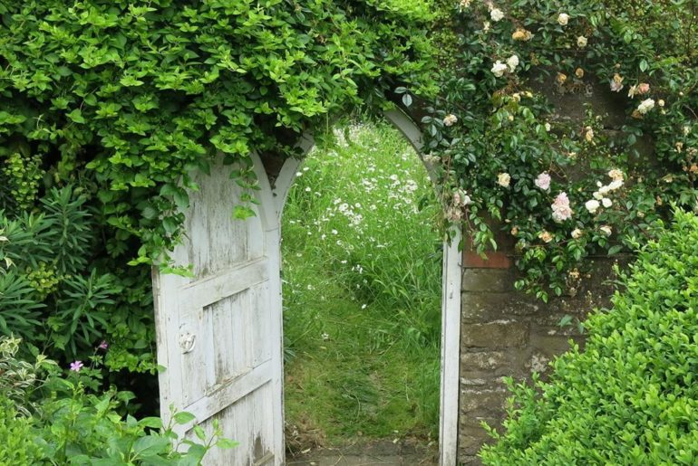 Peeking through doorway in lovely #garden #batcombehouse @mazzullorussell #somer...