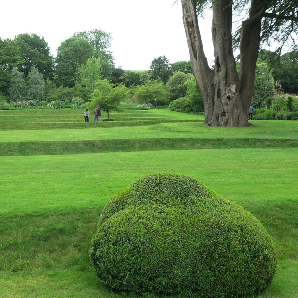Love this #buxus #rock set into #terraces if #mowngrass #cedar #somerset #valley...