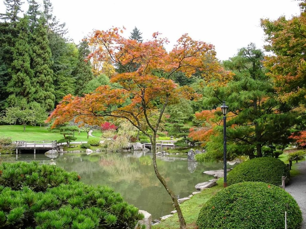Colorful koi, large ponds and meandering paths. The SeattleJapaneseGarden is a m...