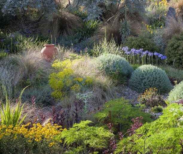 What caught your eye first in this garden? . . Photo by richardbloomphoto . . #g...