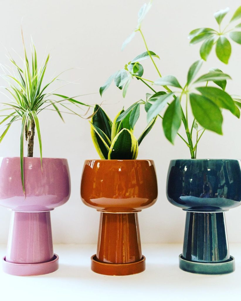Kaya planter in solid? Or Kaya planter in stripe? What's your Kaya Vibe-a? #jung...