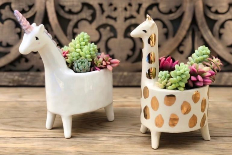 Happy back to school! Use code: ABC for 30% off these cute pots! (Plus they com...