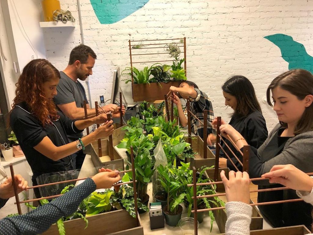 Last month in NYC we did a frond-filled plant workshop with @thesill — showing  ...