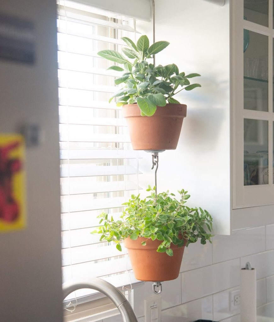 Transform your kitchen window above the sink into an vertical herb garden easily...