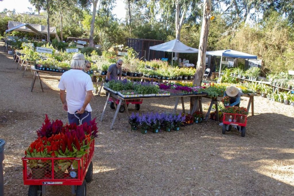 Which plant sales are your favorite? . If you're in the San Diego area, don't mi...