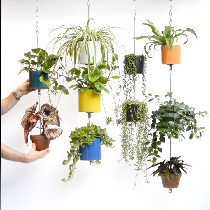 SkyPots — OCD friendly vertical gardening  Hang and connect your clay pots with ...