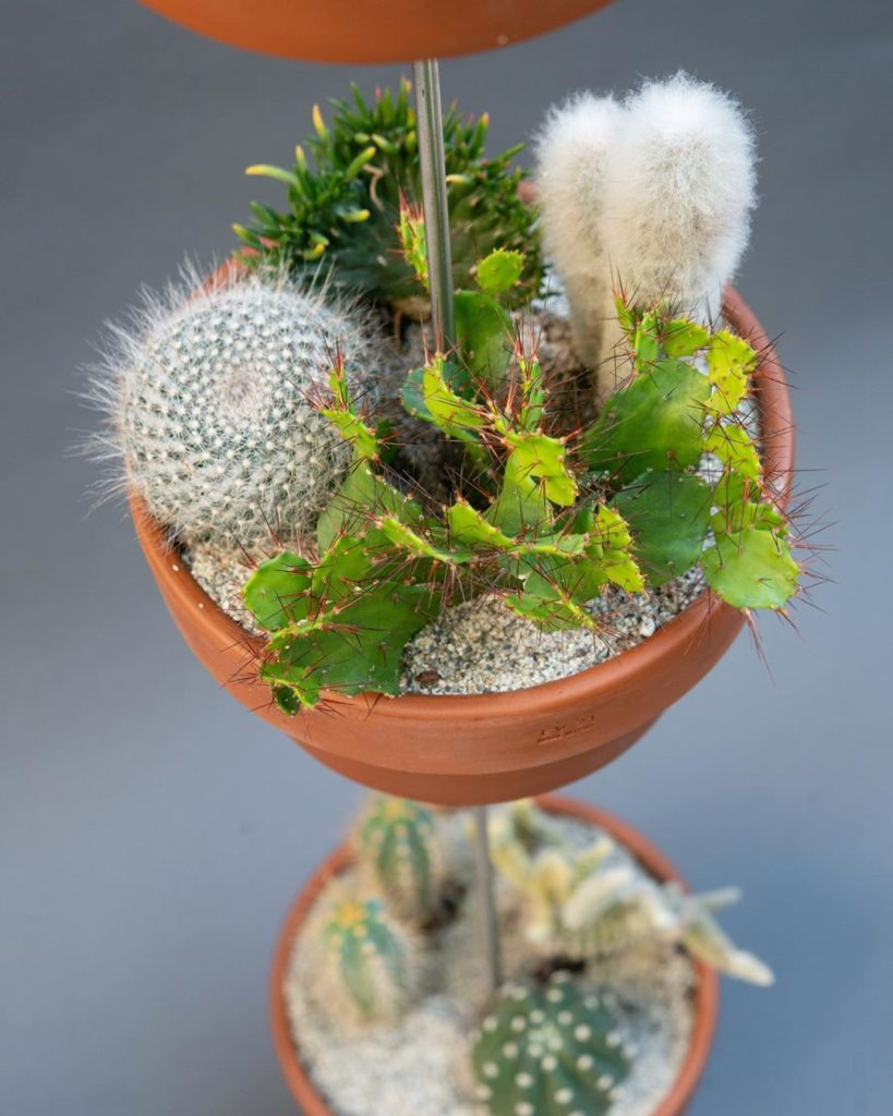 TWO MORE DAYS UNTIL LAUNCH OF @skypots_usa  Loving these desertscape arrangement...