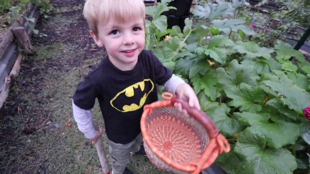 Grow Baby Grow!   VLOG   Roots and Refuge Farm