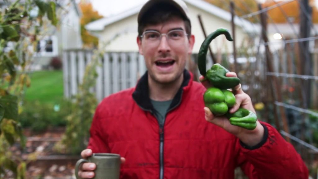 Gardening Year in Review