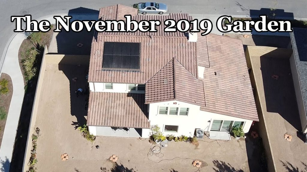 California Gardening  November 2019 Garden Tour - Drone Views, Harvests and more!
