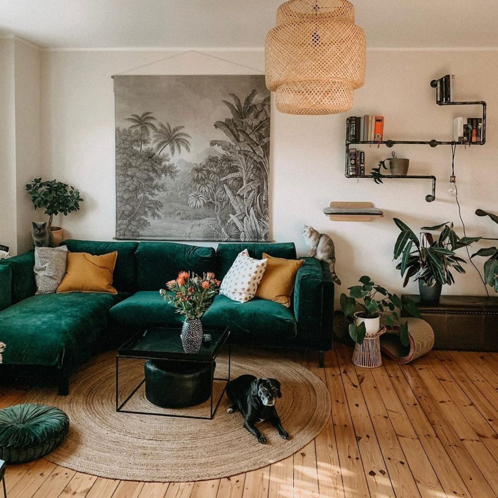 There's something about green plants and a green couch in the same place that ju...