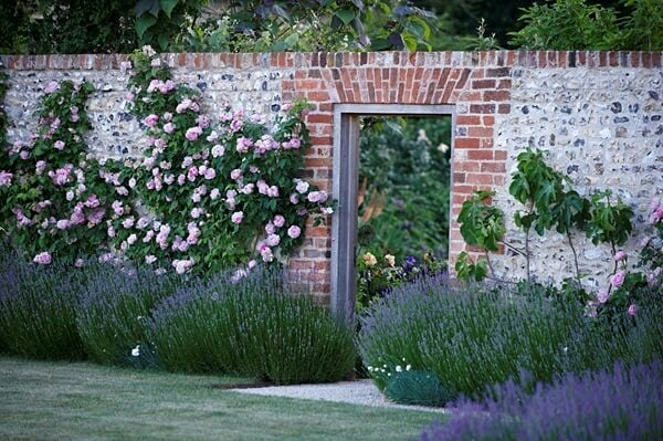 Take a mini tour of a stunning English garden by Jinny Bloom, you won't believe ...