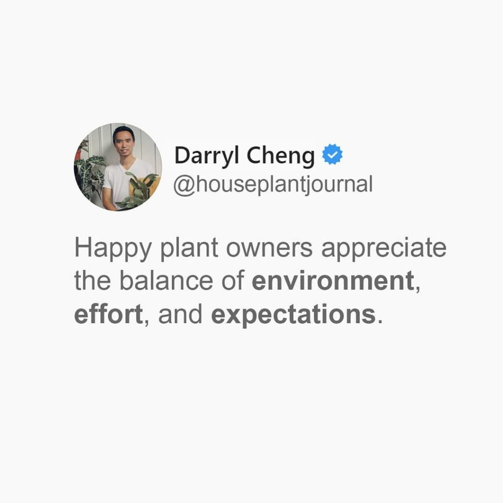 By contrast: unhappy plant owners feel the burden of perfection rests entirely o...