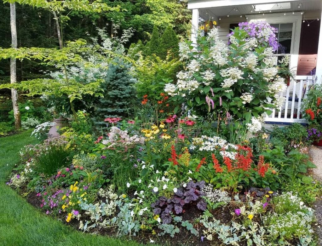 Have a spot in your garden you wish had more color? There's a webinar for that! ...