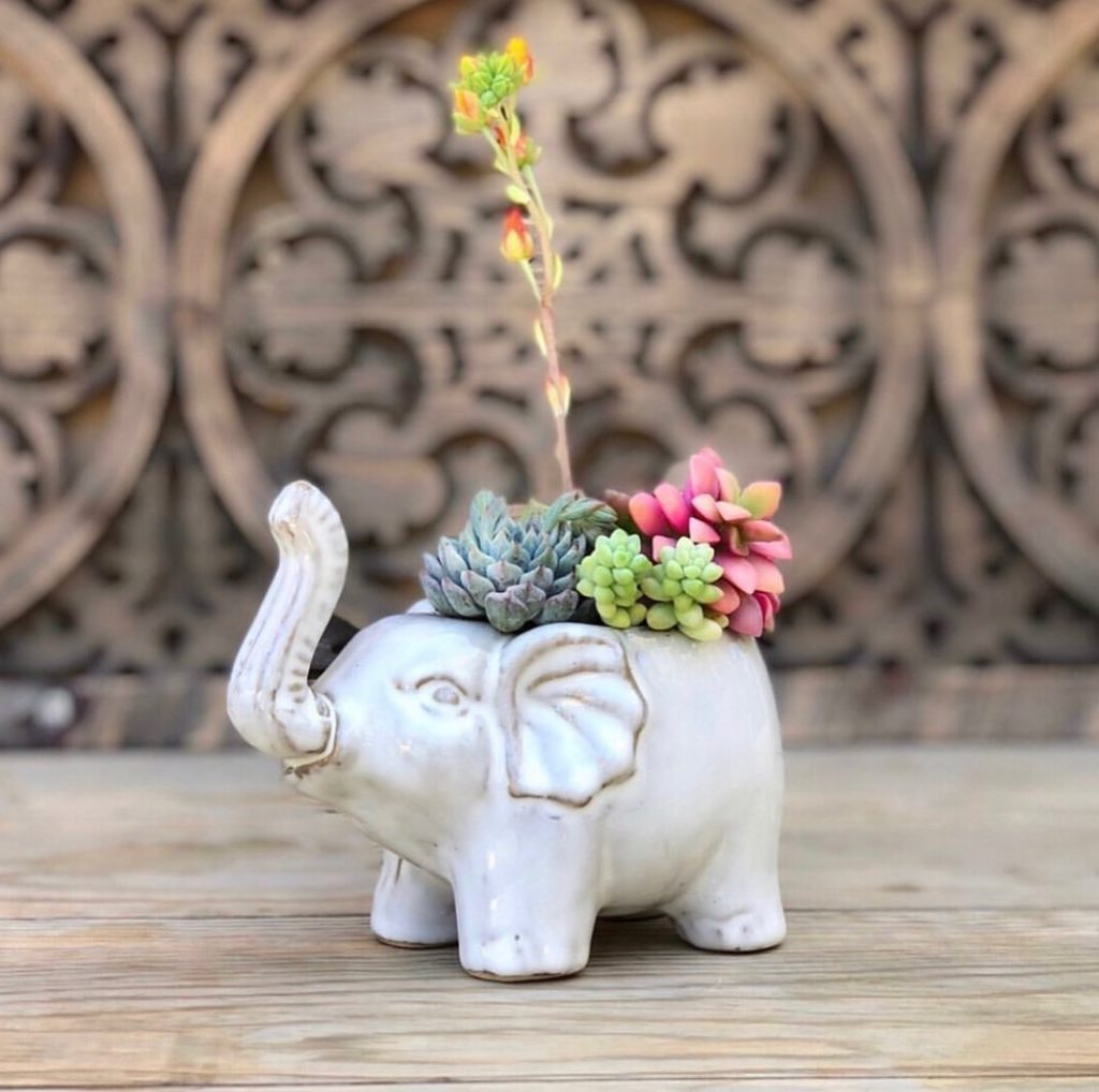 our favorite elephant arrangements are back in stock! These come to you already...