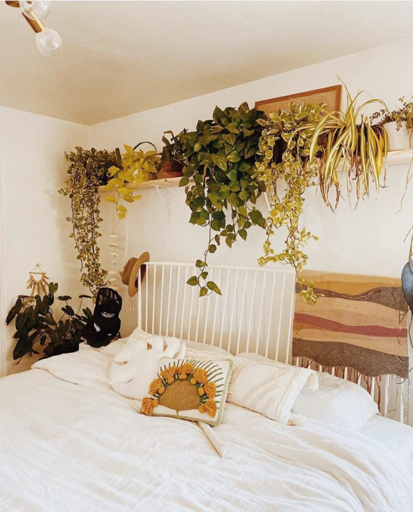 Regram from @nolongerwander — we love the plant #shelfie above your bed! Also yo...