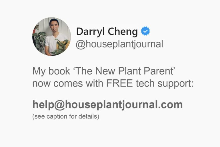 No purchase necessary! But here's what I want to do with the 'Houseplant Q&A' se...