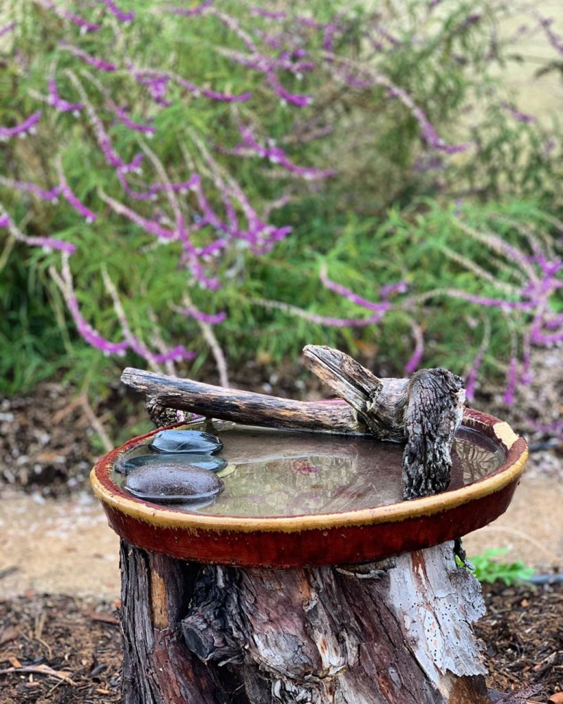 Do you have a birdbath in your garden? . This is in my aunts front yard, about 6...