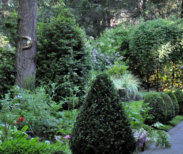 There's so much to see in this Seattle garden! See all of it in Thursday's newsl...