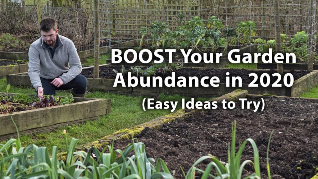 10 Hacks to GROW Your Garden Productivity in 2020! (Lesser-known Tips)