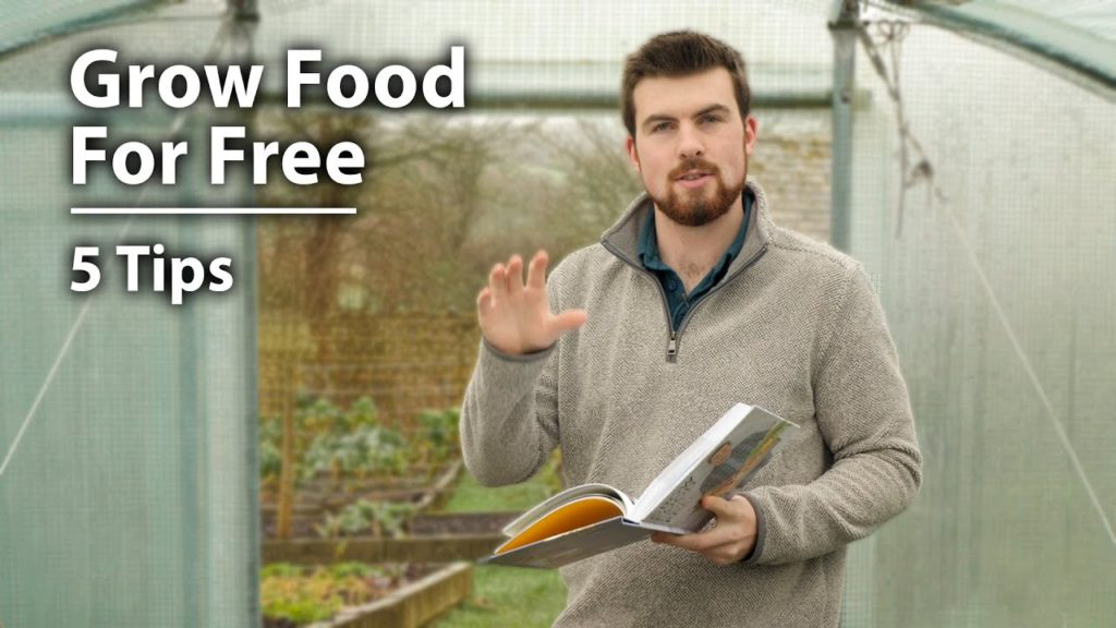 Grow Food For Free - Unboxing AND 5 Tips to Get Started