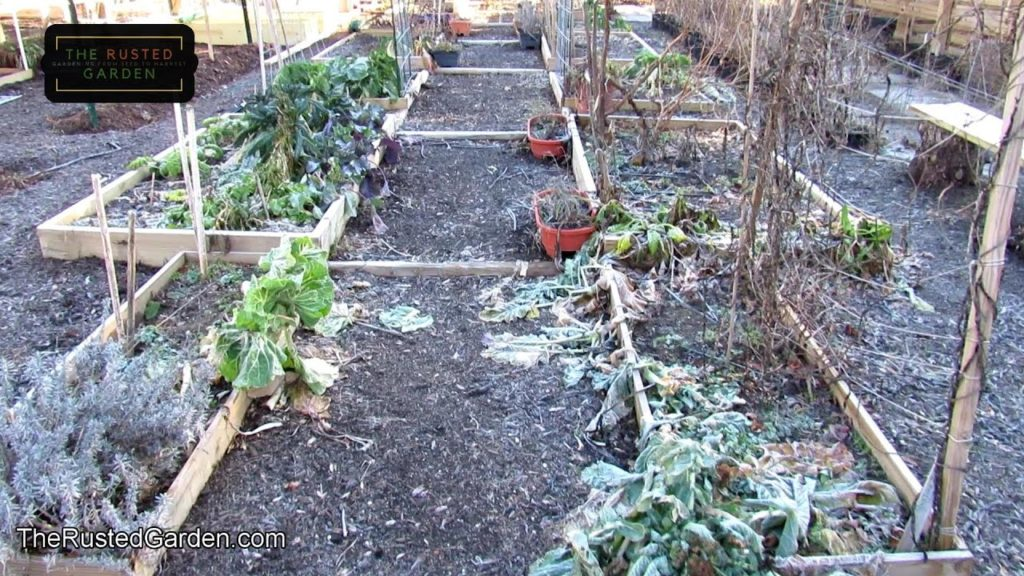 8 Garden Bed Designs to Help You Get Started or Expand Your Garden: Earth, Containers, Raised Beds