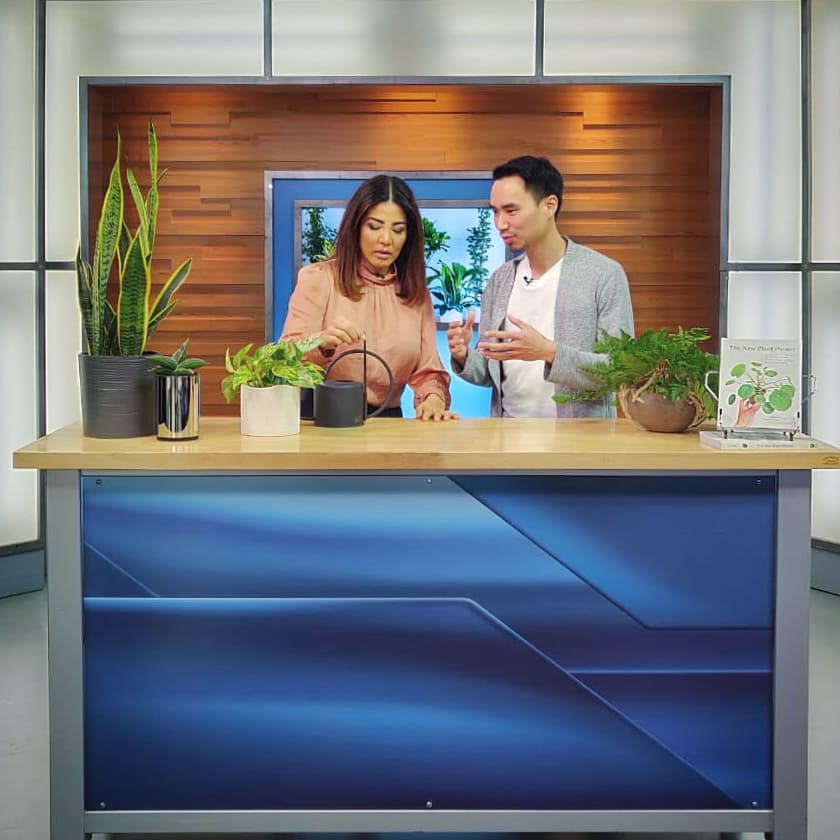 Talking houseplants on TV for National Houseplant Day (Jan. 10). Thanks @globaln...