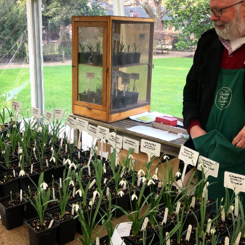 Galanthus heaven here at the @chelsea_physic_garden Most of these special named ...