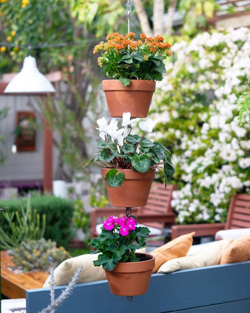 Winter colors in this SkyPots three-pack using three 8-inch terra cotta clay pot...
