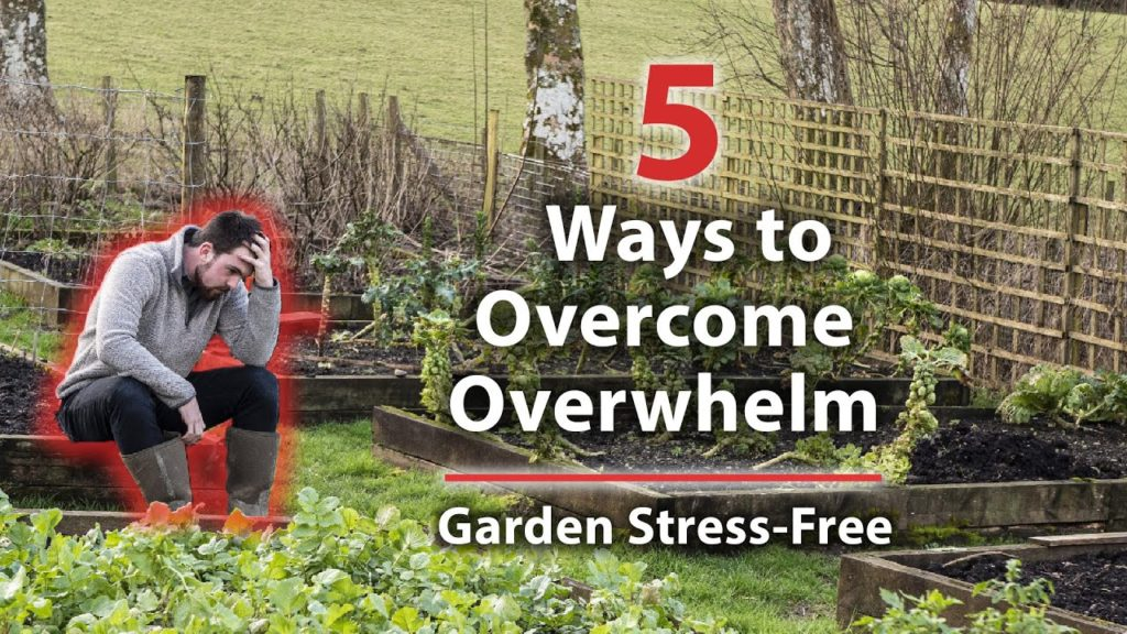 How to Not Feel Overwhelmed in The Garden (Free Yourself from Stress)
