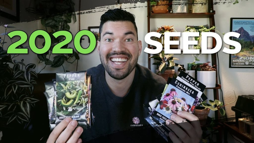 24 Rare Seeds I'm Growing in 2020!