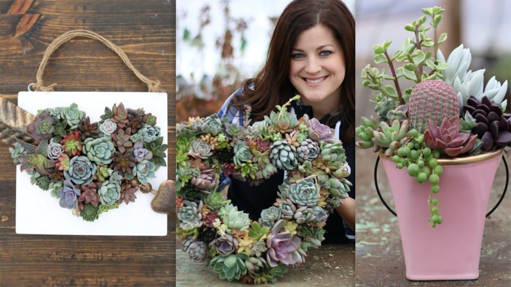 3 Valentines Day Succulent Projects 💕🌿