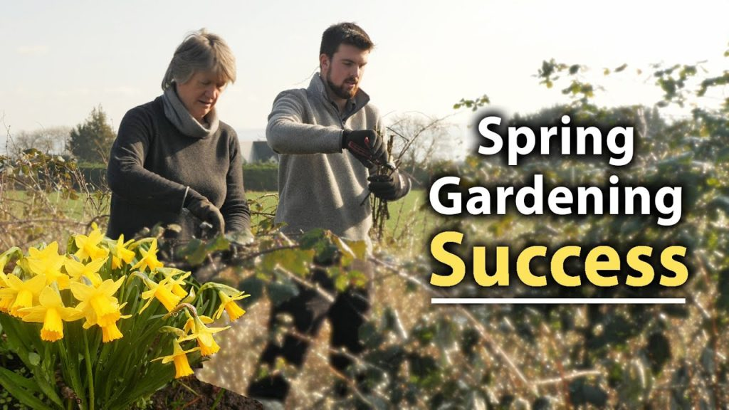 5 Essential Veg Garden Tips for a Succesful Start to Spring