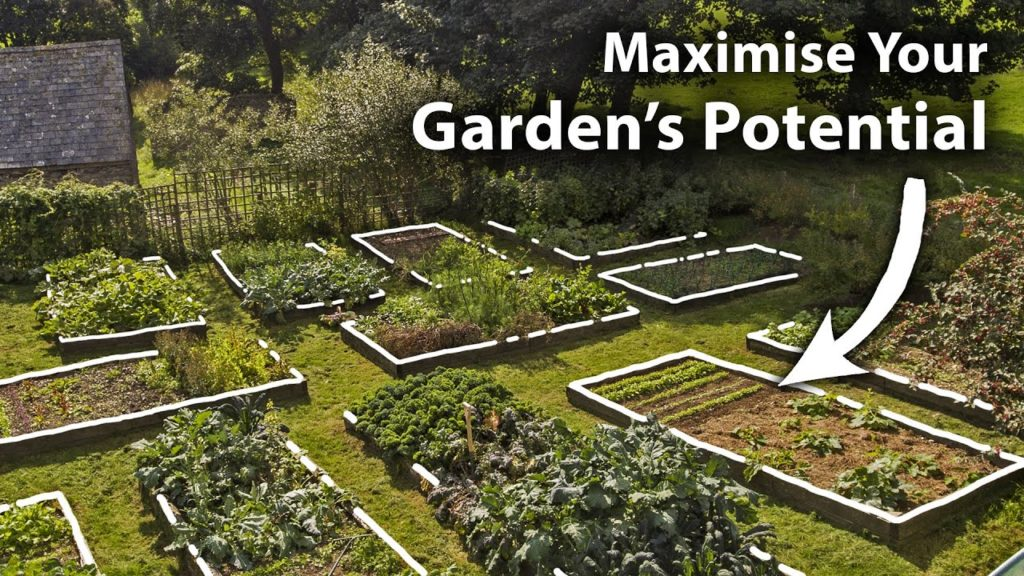 How to Create a Planting Plan for Year-Round Food Abundance | Complete Guide