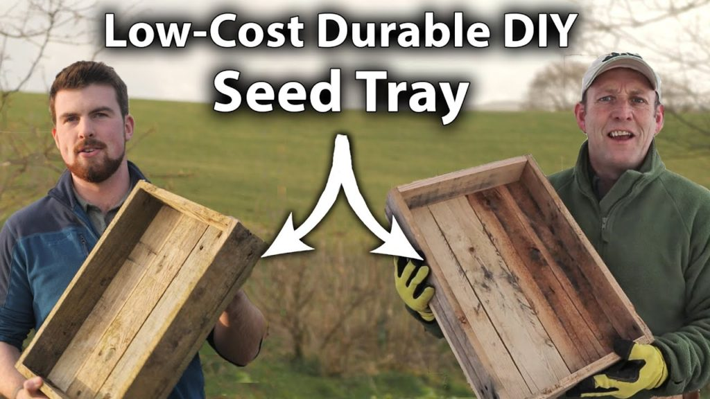 How To Make a Seed Tray out of Pallets | Easy and Low-Cost Pallet Project!