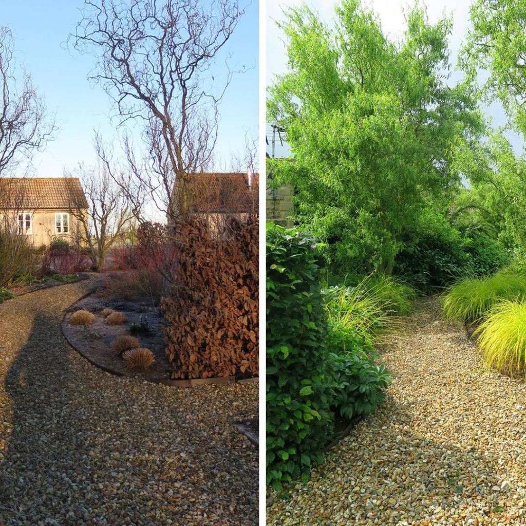 Same spot different #season #winter #summer #seasonalchange the joy of #gardens ...