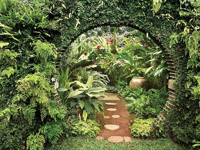 We're warming things up in this week's newsletter with a look at tropical garden...