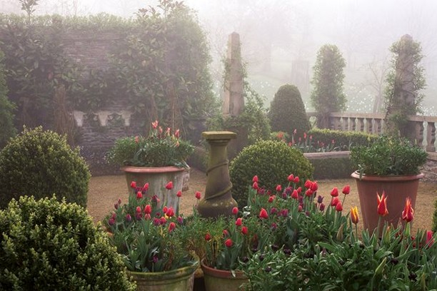 There's something so romantic about an English garden!  . Photo by Mick Hales . ...