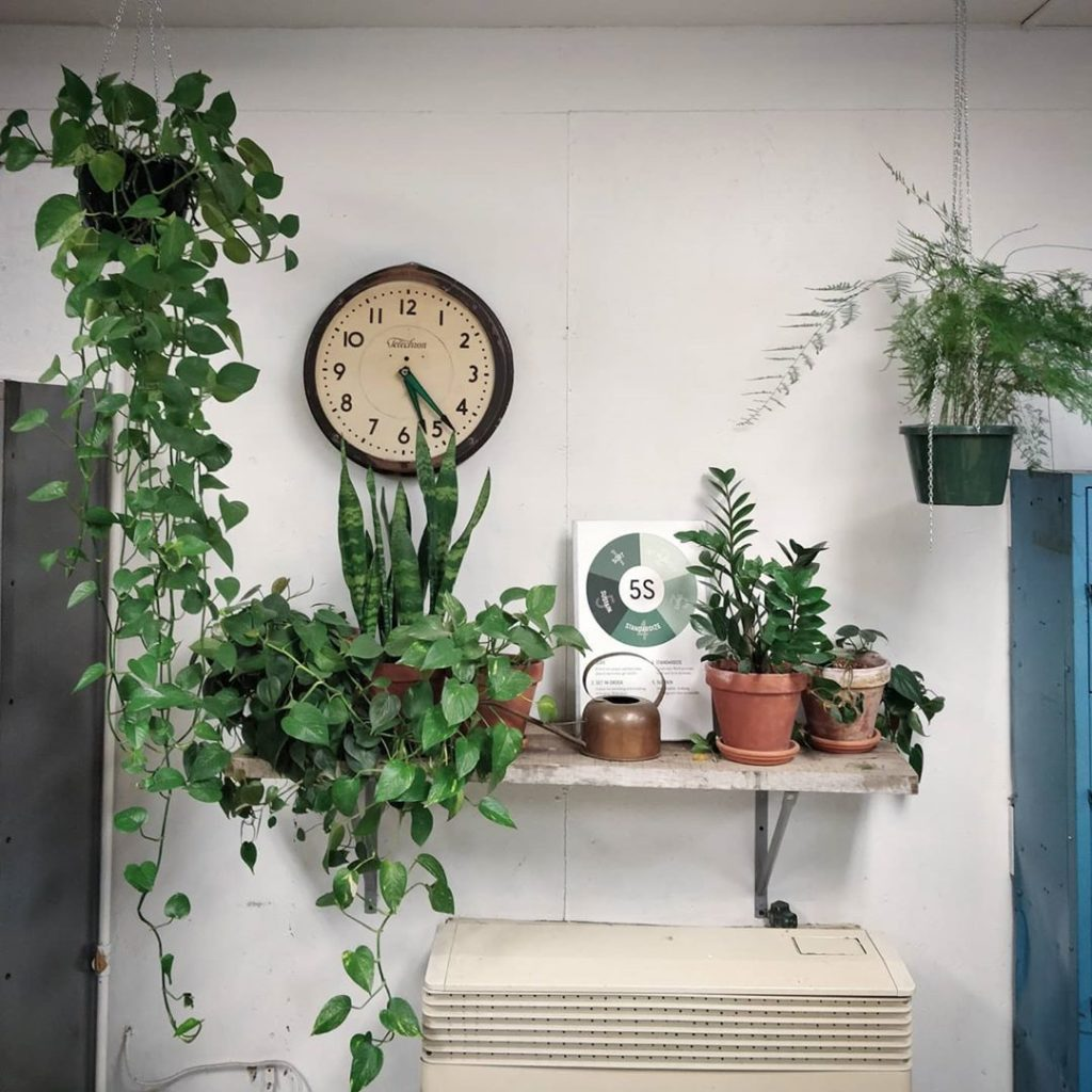 This is the break room at @mulhalls nursery. I'm impressed both as a plant lover...