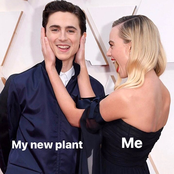 I will always have this reaction for a new plant child. ALWAYS....