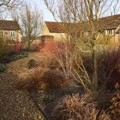 Finally drawing towards the end of #winter - #gardens in full #wintercolours #ch...