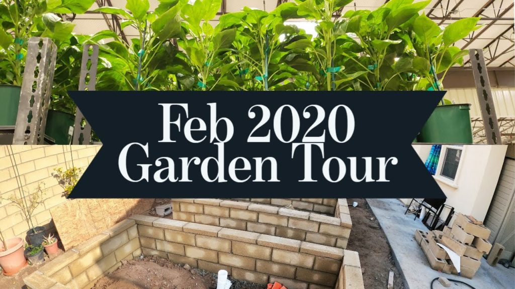 California Gardening Feb 2020 Garden Tour - Gardening Tips, Advice & more!