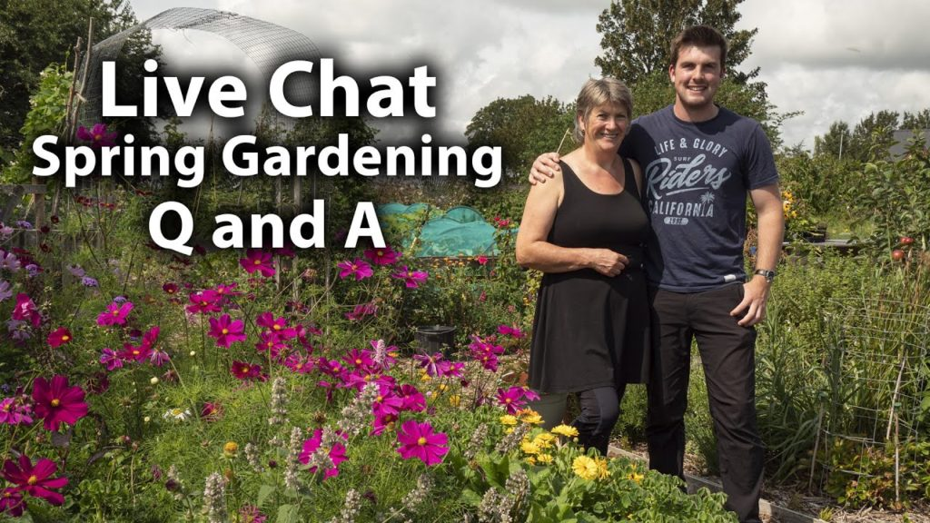 Gardening Q&A Live Chat with Huw and Liz