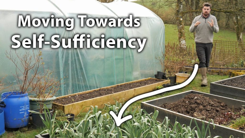 5 Tips - How to Start Being Self-Sufficient in Vegetables
