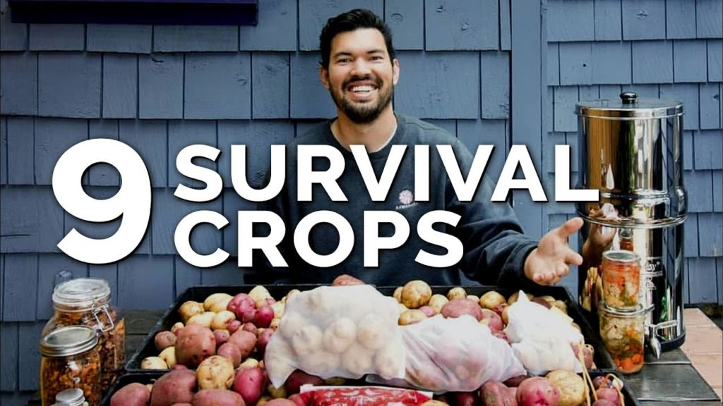 9 Survival Gardening Crops to Grow in a Post Apocalyptic World